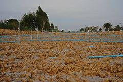Soil preparation for vegetable Royalty Free Stock Photo