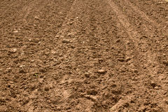 Soil prepared for agriculture Royalty Free Stock Image