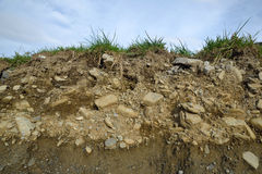 Soil profile. A soil profile showing grass, topsoil and subsoil in Westland, New Zealand Royalty Free Stock Image