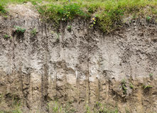 Soil profile Royalty Free Stock Images