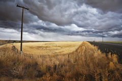 Soil rural road  to fields of Montana Royalty Free Stock Photography
