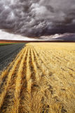 Soil rural road to fields of Montana. Royalty Free Stock Photos