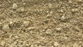 Soil / sand texture background. Abstract texture. / wallpaper Stock Image