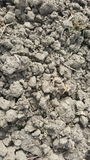 Soil / sand texture background. Abstract texture. / wallpaper Stock Photography