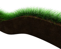 Soil section Stock Photography
