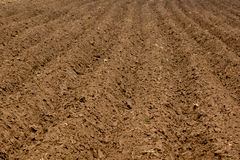 Soil Stock Photos