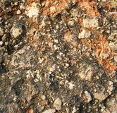 Soil and stone after rain texture as background Royalty Free Stock Photos