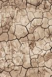 The soil surface is dry and cracked Stock Image