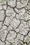Soil Texture. This is a Soil Texture of Dry Area Stock Image