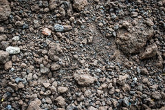 Soil texture background. The soil represents an object that occurs naturally from physical decay. And chemical properties of rocks and minerals. Combined with Stock Image