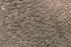 Soil texture or soil background with small sand stone for industrial construction concept design.  Royalty Free Stock Image