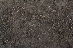 Soil texture background Royalty Free Stock Image