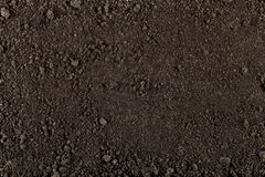 Soil texture Royalty Free Stock Photography