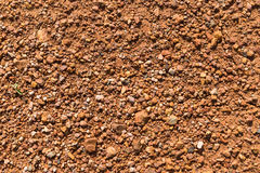 Soil texture, brown ground soil texture mixed with small rocks Royalty Free Stock Photo