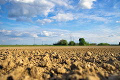Soil texture detail on the field Royalty Free Stock Photo