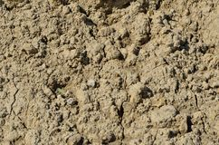 Soil texture Royalty Free Stock Photo