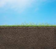 A soil texture Stock Photo