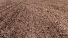 Soil and tractor spread fertilizer on field. Planting sow crops stock video footage