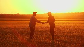 Soil, Two Farmers exam ground at sunset. Two businessman farmers shake hands with each other firmly. They talk on the field against a beautiful sunset, they use stock video footage