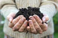 Soil Royalty Free Stock Photos