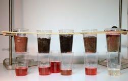 Soil types analysis stock photos