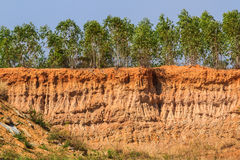 Soil under condition of the erosion. royalty free stock photography