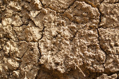 Soil wall Stock Photos