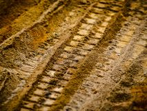 Soil, Wood, Close Up, Texture Stock Photo