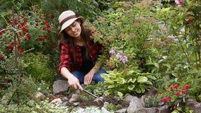 Soin de jardinier des fleurs dans le jardin banque de vidéos