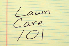 Soin 101 de pelouse sur un tampon jaune Photo libre de droits