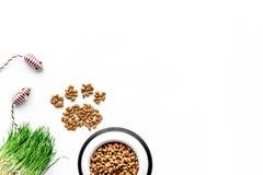 Soin des animaux familiers avec la nourriture sèche pour l'animal familier - le chat dans la cuvette en plastique et la patte imp Image libre de droits