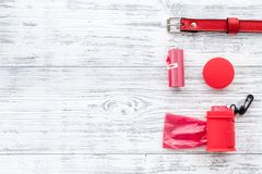Soin des animaux familiers et outils rouges de toilettage avec le collier sur l'espace en bois blanc de vue supérieure de fond po Photos stock