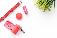 Soin des animaux familiers et outils rouges de toilettage sur l'espace blanc de vue supérieure de fond pour le texte Photo stock