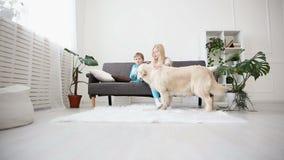Soin pour des animaux familiers les enfants frottent leur chien avec amour dans le salon golden retriever heureux dans la famille banque de vidéos