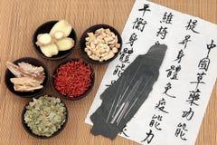 Soins de santé chinois images stock