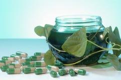 Soins de santé de fines herbes Image stock