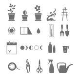 Soins des plantes d'intérieur Ensemble d'outils pour des fleurs Photo libre de droits