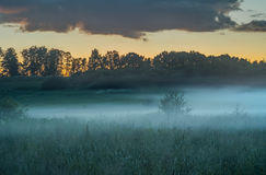 Soirée brumeuse photographie stock