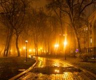 Soirée brumeuse en parc Photographie stock libre de droits