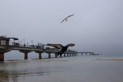 Soirée d'hiver sur le pilier dans Miedzyzdroje avec des oiseaux Images libres de droits