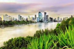 Soirée de Brisbane Images stock
