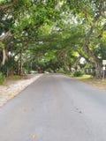 Soirée de Coral Gables photos libres de droits