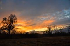 Soirée de coucher du soleil sur le marais Image stock