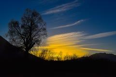 Soirée de coucher du soleil sur le marais Photo libre de droits