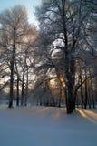 Soirée de l'hiver Photo libre de droits