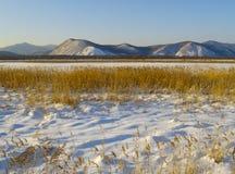 Soirée de l'hiver dans une vallée d'Ussuri de fleuve, Russie Images libres de droits