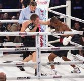 «Soirée de la boxe» dans le palais des sports dans Kyiv Image libre de droits
