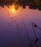 Soirée de lac Photo stock
