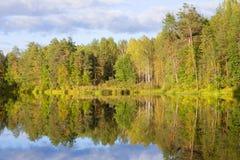 Soirée de Sunny September sur un lac de forêt Région de Kostroma, Russie photographie stock