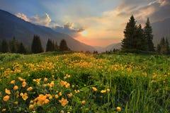 Soirée en montagnes images libres de droits